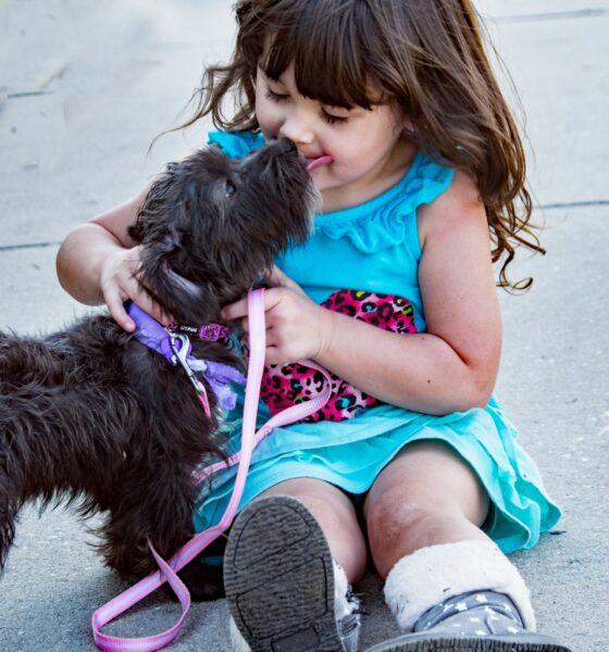 Hund og barn